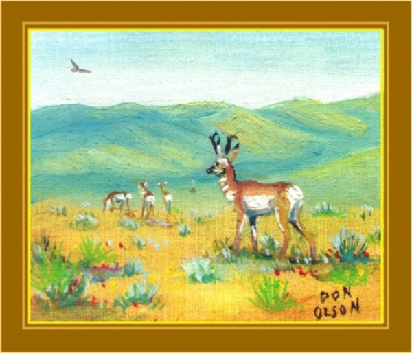 THE PRONGHORN FAMILY oil