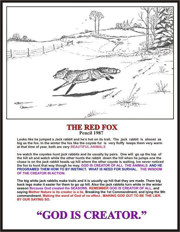 THE RED FOX 1987