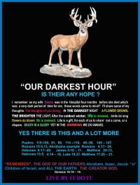 Our Darkest Hour